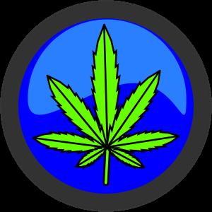 Blauer Button mit gruenen Hanfblatt